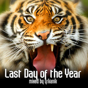 [CD142] Last Day of the Year [mixed by yrkanik] 2010
